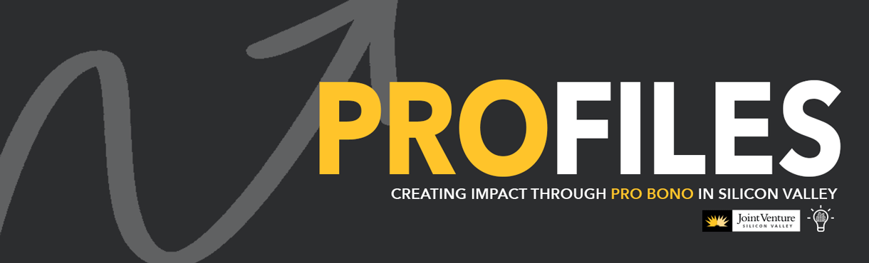 grey and yellow PRO-files banner